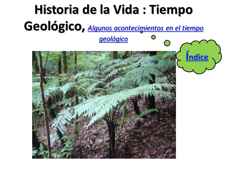 Historia de la Vida : Tiempo Geológico, Algunos acontecimientos en el tiempo geológico Algunos acontecimientos en el tiempo geológico Algunos aconteci