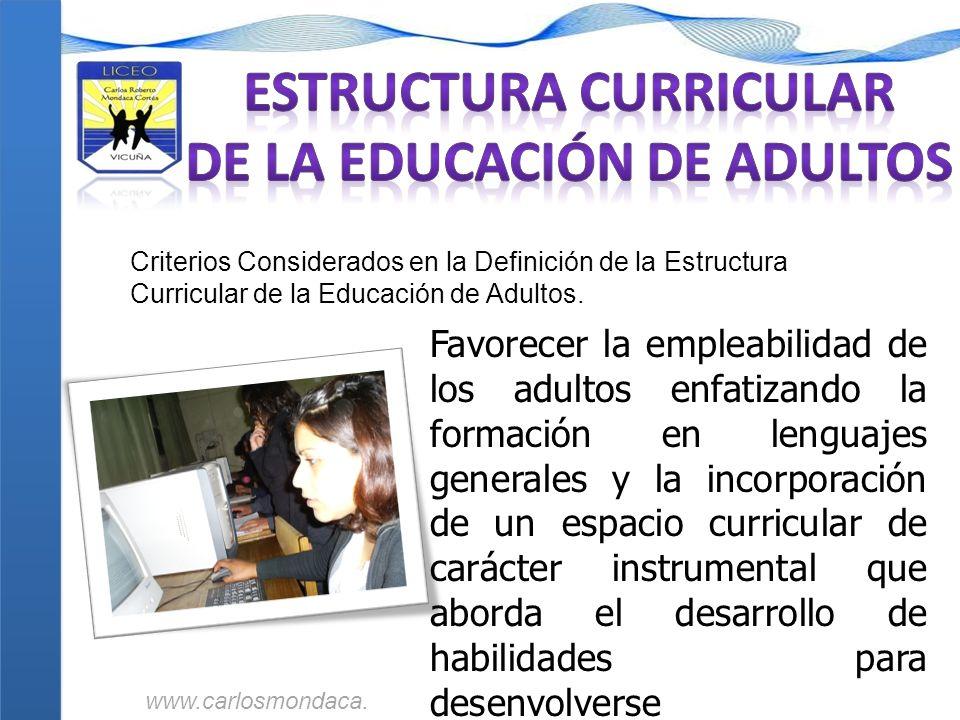 Criterios Considerados en la Definición de la Estructura Curricular de la Educación de Adultos. Favorecer la empleabilidad de los adultos enfatizando