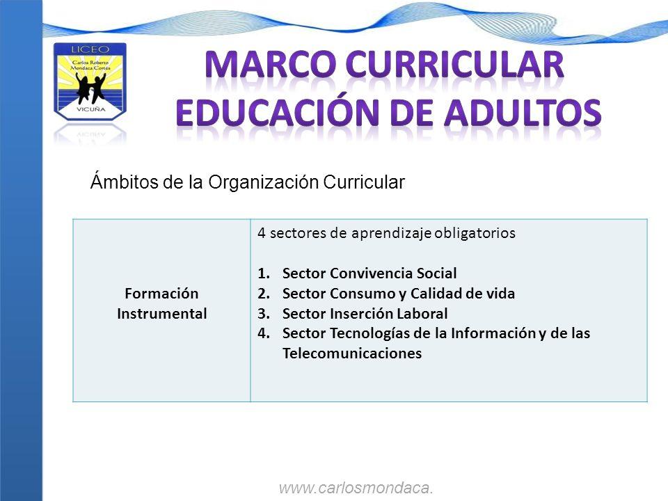 Formación Instrumental 4 sectores de aprendizaje obligatorios 1.Sector Convivencia Social 2.Sector Consumo y Calidad de vida 3.Sector Inserción Labora