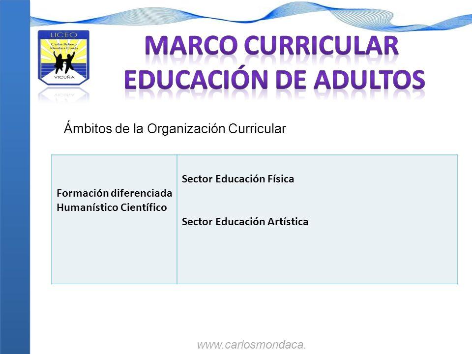 Formación diferenciada Humanístico Científico Sector Educación Física Sector Educación Artística Ámbitos de la Organización Curricular www.carlosmonda