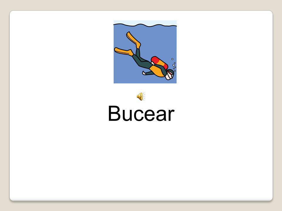 Bucear