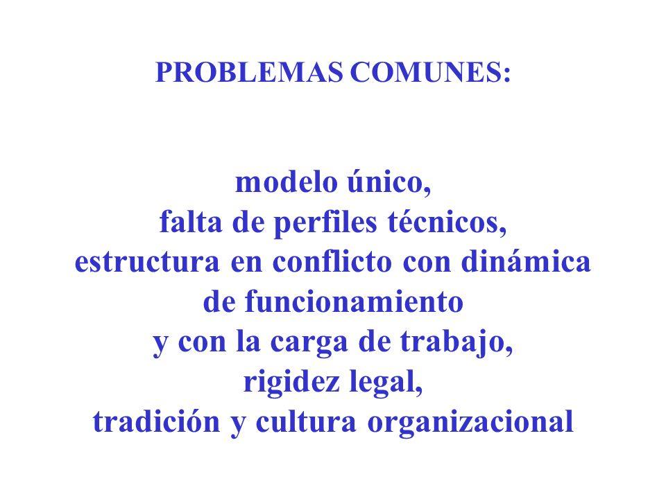 PROBLEMAS COMUNES: modelo único, falta de perfiles técnicos, estructura en conflicto con dinámica de funcionamiento y con la carga de trabajo, rigidez