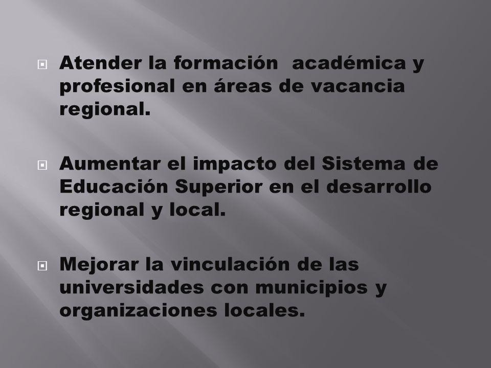 Atender la formación académica y profesional en áreas de vacancia regional. Aumentar el impacto del Sistema de Educación Superior en el desarrollo reg