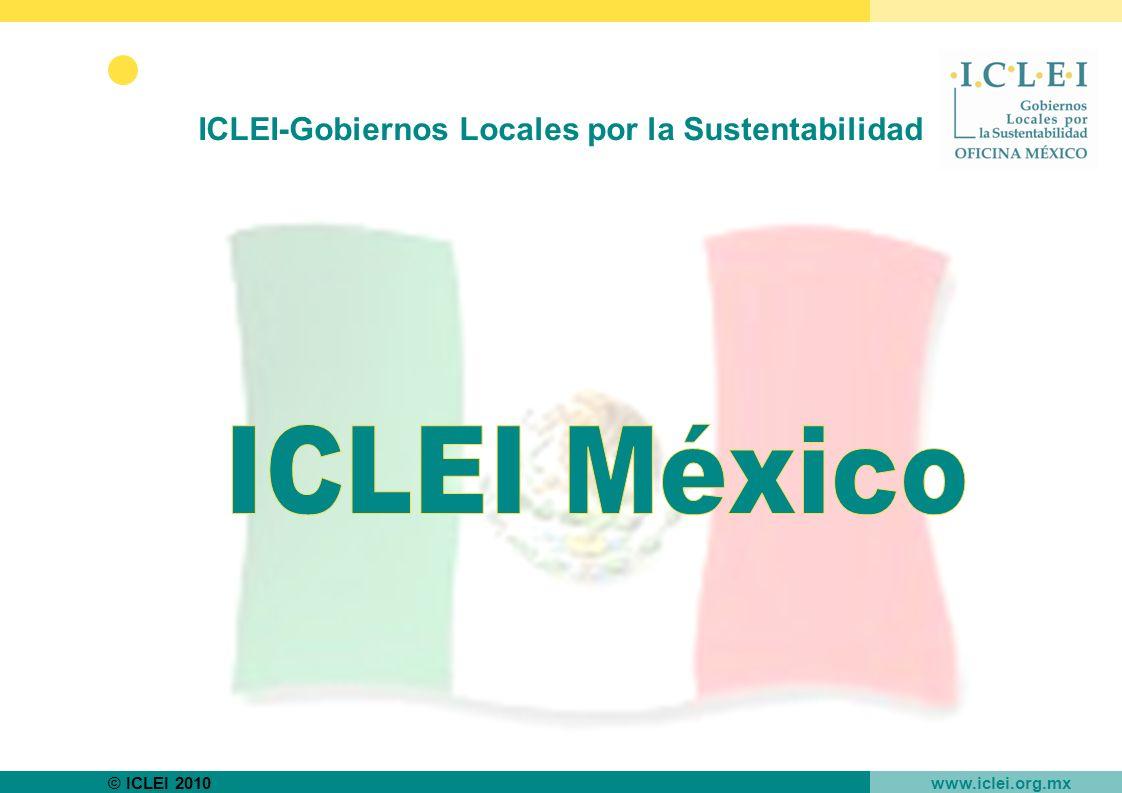 © ICLEI 2010 www.iclei.org.mx ICLEI-Gobiernos Locales por la Sustentabilidad