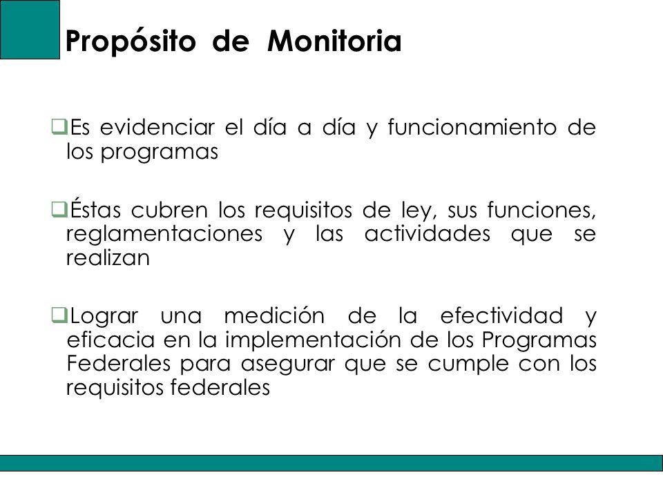 Propósito de Monitoria Es evidenciar el día a día y funcionamiento de los programas Éstas cubren los requisitos de ley, sus funciones, reglamentaciones y las actividades que se realizan Lograr una medición de la efectividad y eficacia en la implementación de los Programas Federales para asegurar que se cumple con los requisitos federales