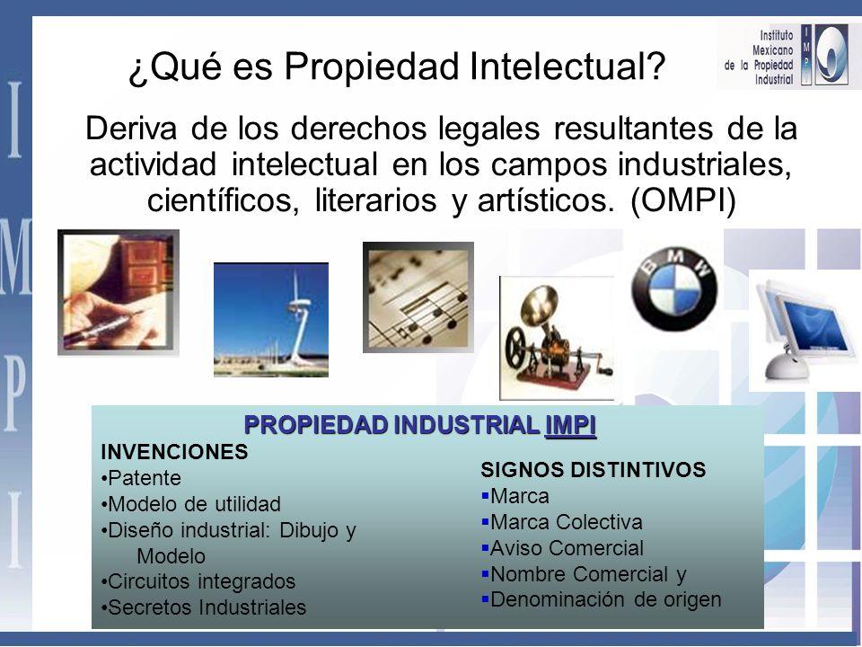 Deriva de los derechos legales resultantes de la actividad intelectual en los campos industriales, científicos, literarios y artísticos.