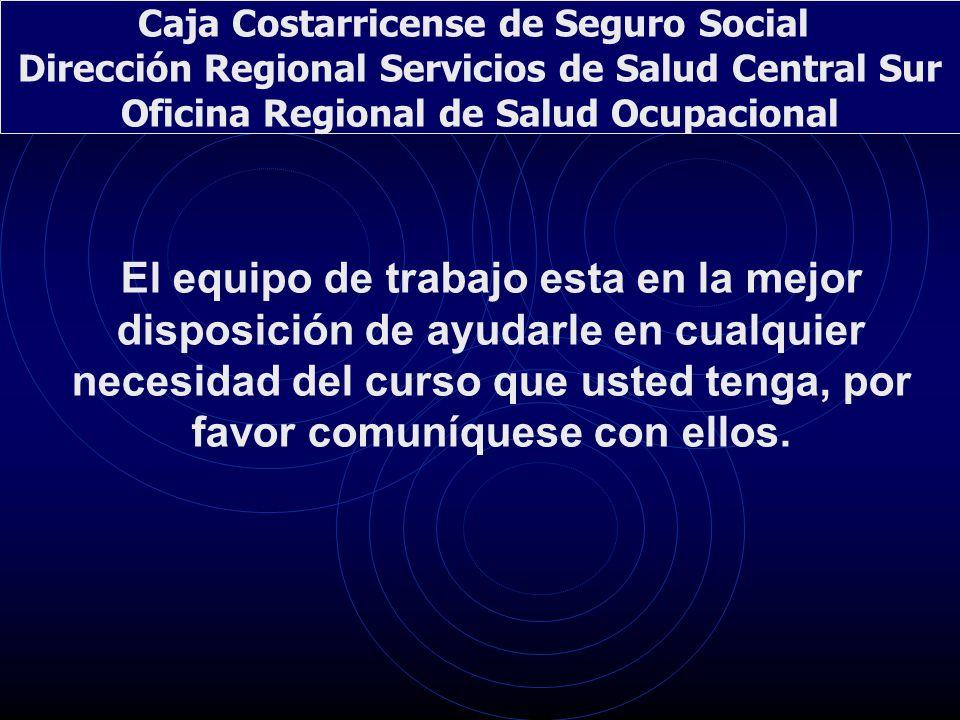 Caja Costarricense de Seguro Social Dirección Regional Servicios de Salud Central Sur Oficina Regional de Salud Ocupacional El equipo de trabajo esta