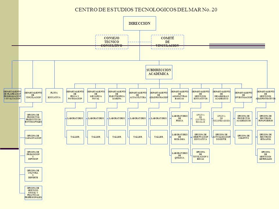 DIRECCION COMITÉ DE VINCULACION CONSEJO TECNICO CONSULTIVO DEPARTAMENTO DE PLANEACION PROGRAMACIÓN Y EVALUACION DEPARTAMENTO DE VINCULACION FLOTA EDUC