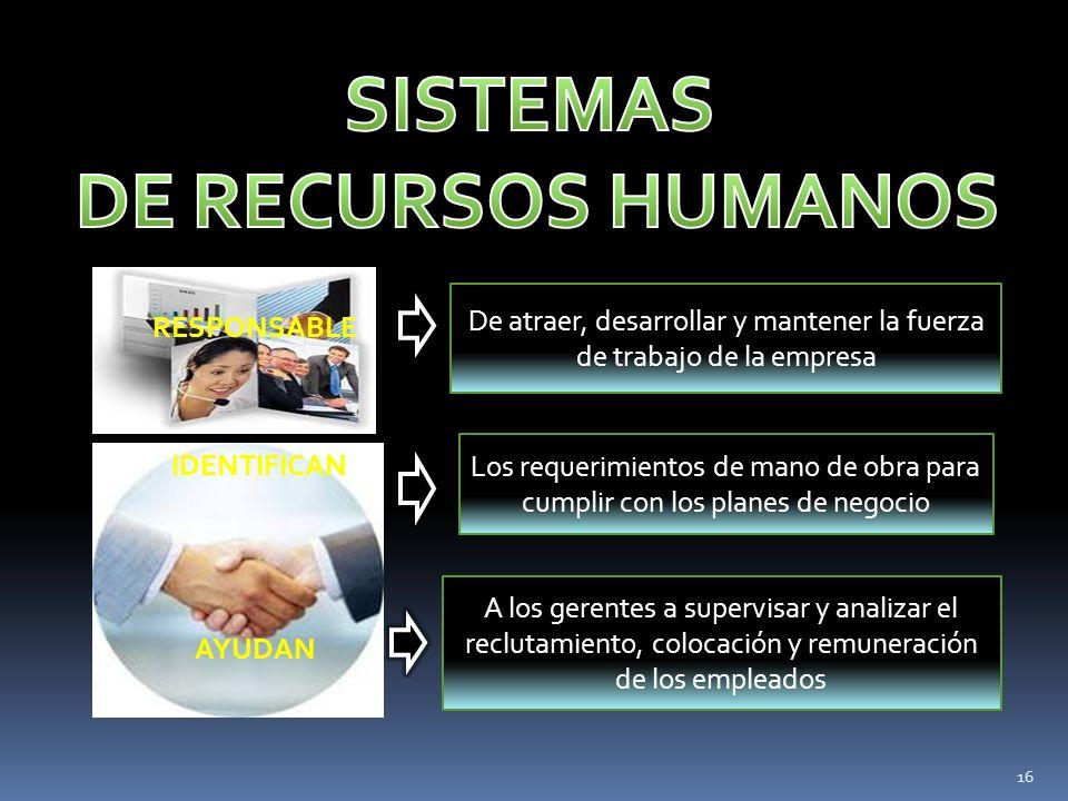 RESPONSABLE IDENTIFICAN AYUDAN De atraer, desarrollar y mantener la fuerza de trabajo de la empresa Los requerimientos de mano de obra para cumplir co