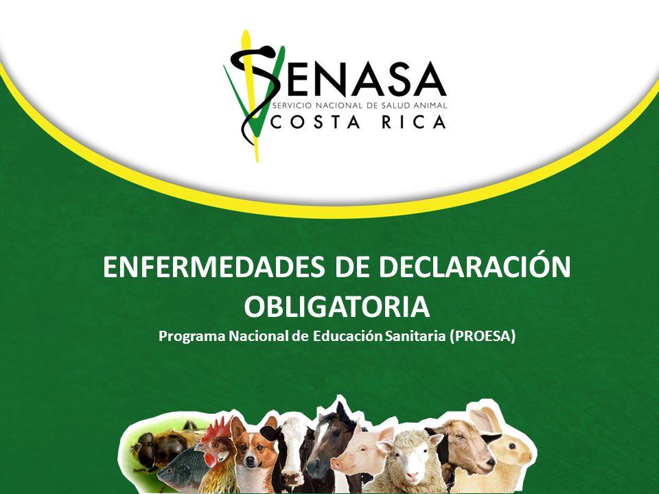 ENFERMEDADES DE DECLARACIÓN OBLIGATORIA Programa Nacional de Educación Sanitaria (PROESA)