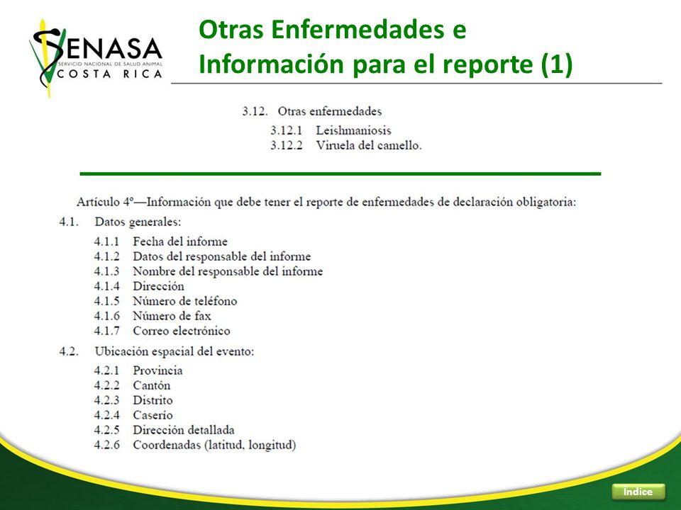 Otras Enfermedades e Información para el reporte (1) Índice