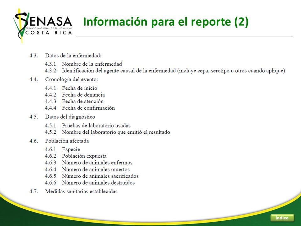 Información para el reporte (2) Índice
