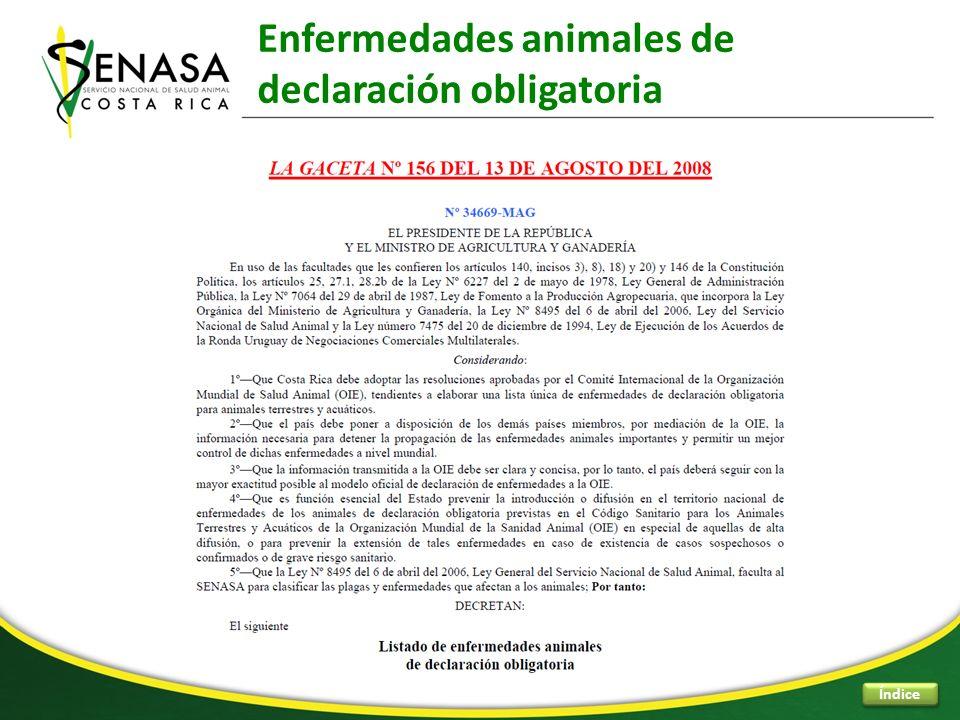 Enfermedades animales de declaración obligatoria Índice