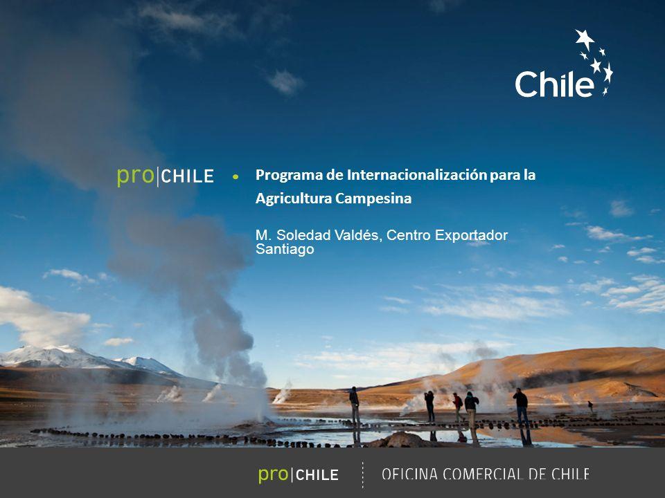 Marcas Sectoriales | ProChile 03.07.2013 / OFICINA COMERCIAL DE CHILE FORO INTERNACIONAL ProCompite OTROS RESULTADOS Creación de Consorcios Bee Products Chile S.A.