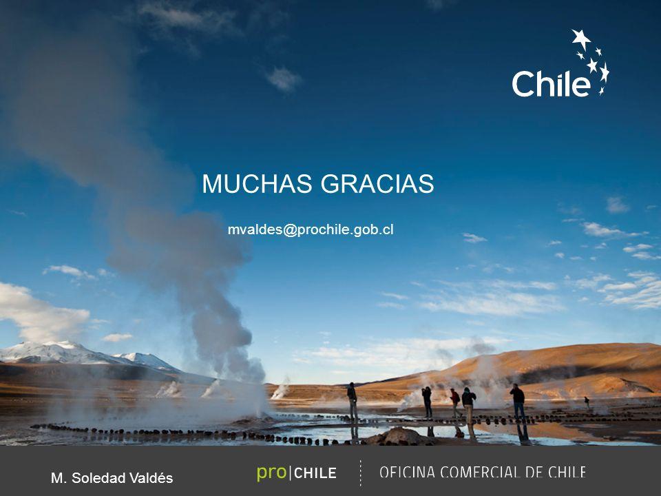 MUCHAS GRACIAS M. Soledad Valdés mvaldes@prochile.gob.cl