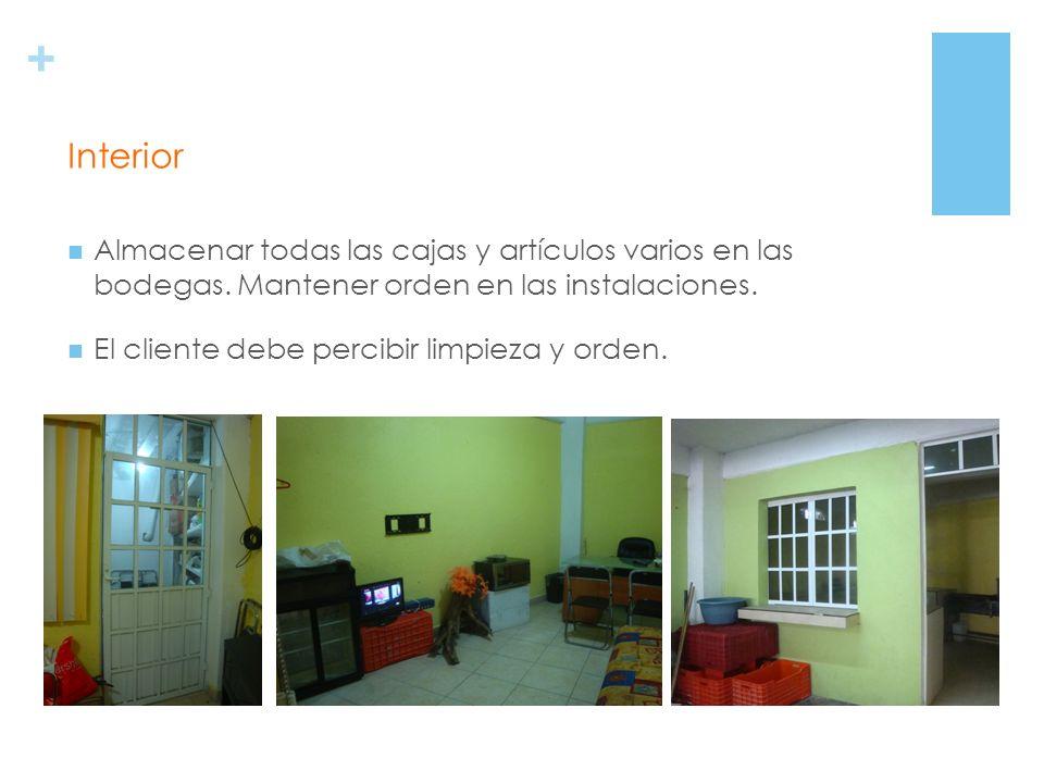 + Muebles cómodos para los clientes. Sillas no plegables, cómodas. Oficina