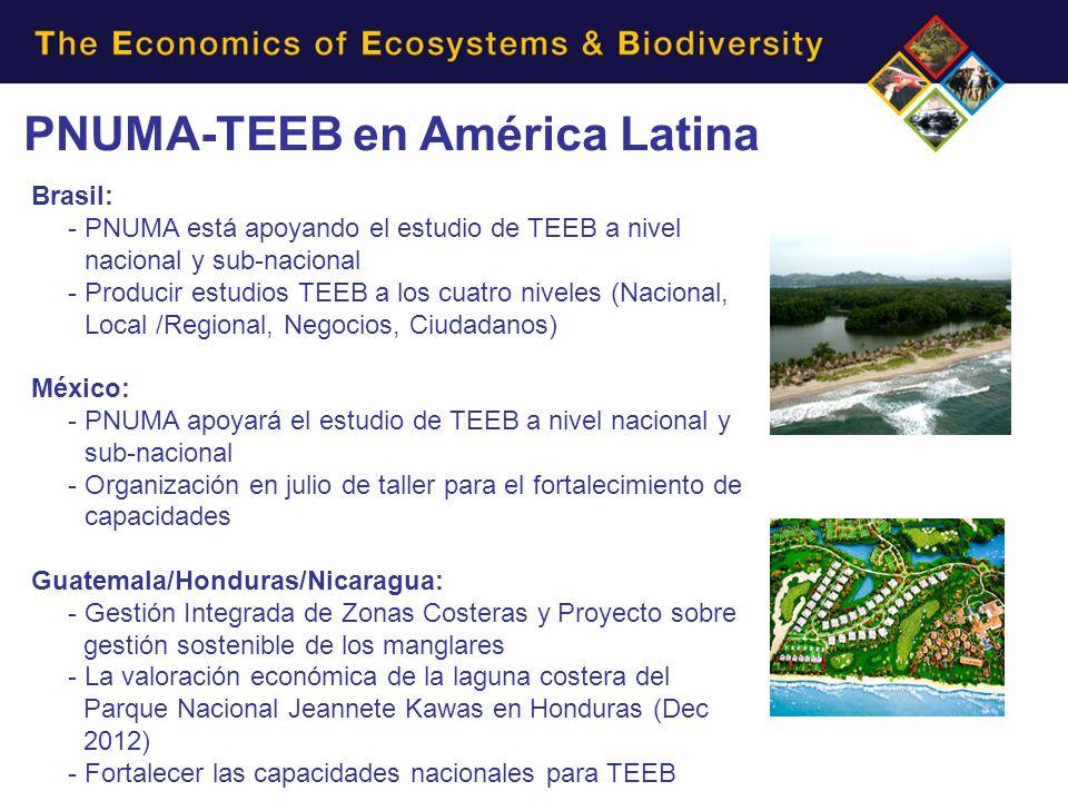 PNUMA-TEEB en América Latina Brasil: - PNUMA está apoyando el estudio de TEEB a nivel nacional y sub-nacional - Producir estudios TEEB a los cuatro niveles (Nacional, Local /Regional, Negocios, Ciudadanos) México: - PNUMA apoyará el estudio de TEEB a nivel nacional y sub-nacional - Organización en julio de taller para el fortalecimiento de capacidades Guatemala/Honduras/Nicaragua: - Gestión Integrada de Zonas Costeras y Proyecto sobre gestión sostenible de los manglares - La valoración económica de la laguna costera del Parque Nacional Jeannete Kawas en Honduras (Dec 2012) - Fortalecer las capacidades nacionales para TEEB