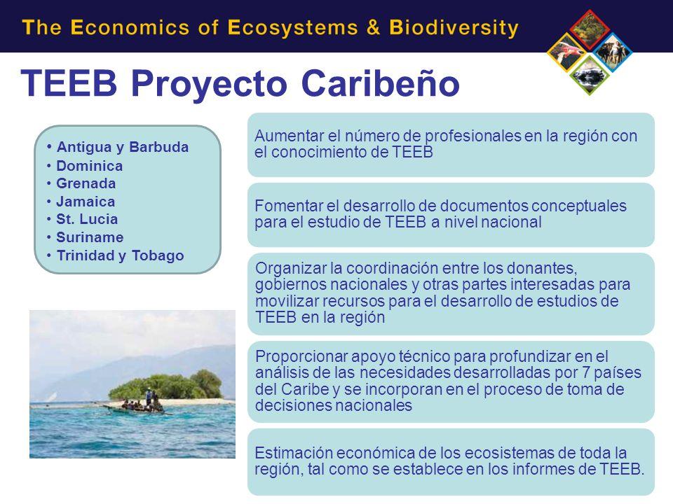 TEEB Proyecto Caribeño Antigua y Barbuda Dominica Grenada Jamaica St. Lucia Suriname Trinidad y Tobago Aumentar el número de profesionales en la regió