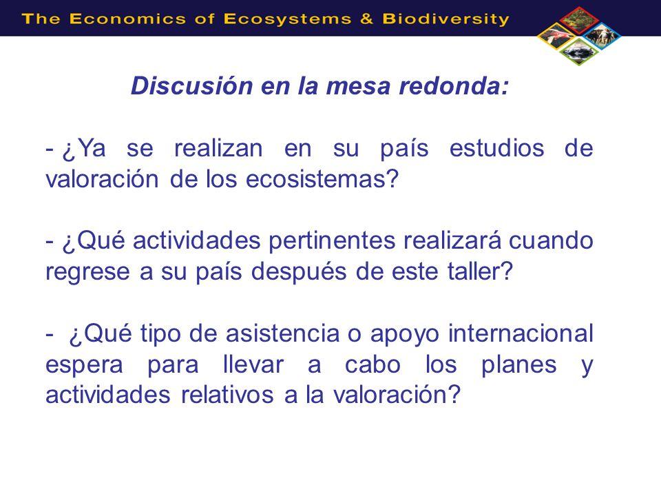 Discusión en la mesa redonda: - ¿Ya se realizan en su país estudios de valoración de los ecosistemas? - ¿Qué actividades pertinentes realizará cuando