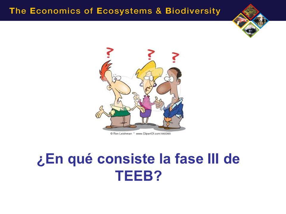 ¿En qué consiste la fase III de TEEB?