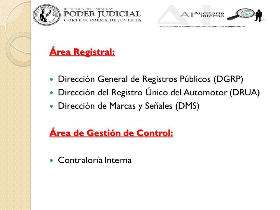 Área Registral: Dirección General de Registros Públicos (DGRP) Dirección del Registro Único del Automotor (DRUA) Dirección de Marcas y Señales (DMS) Área de Gestión de Control: Contraloría Interna
