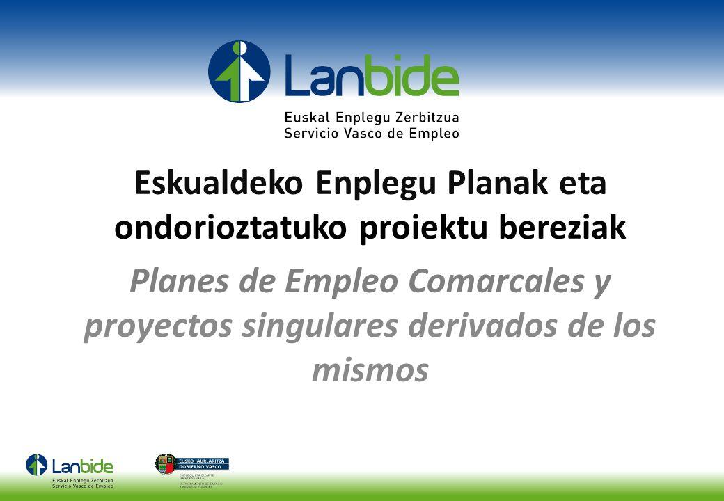 Eskualdeko Enplegu Planak eta ondorioztatuko proiektu bereziak Planes de Empleo Comarcales y proyectos singulares derivados de los mismos