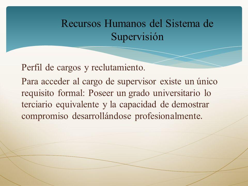 Perfil de cargos y reclutamiento. Para acceder al cargo de supervisor existe un único requisito formal: Poseer un grado universitario lo terciario equ