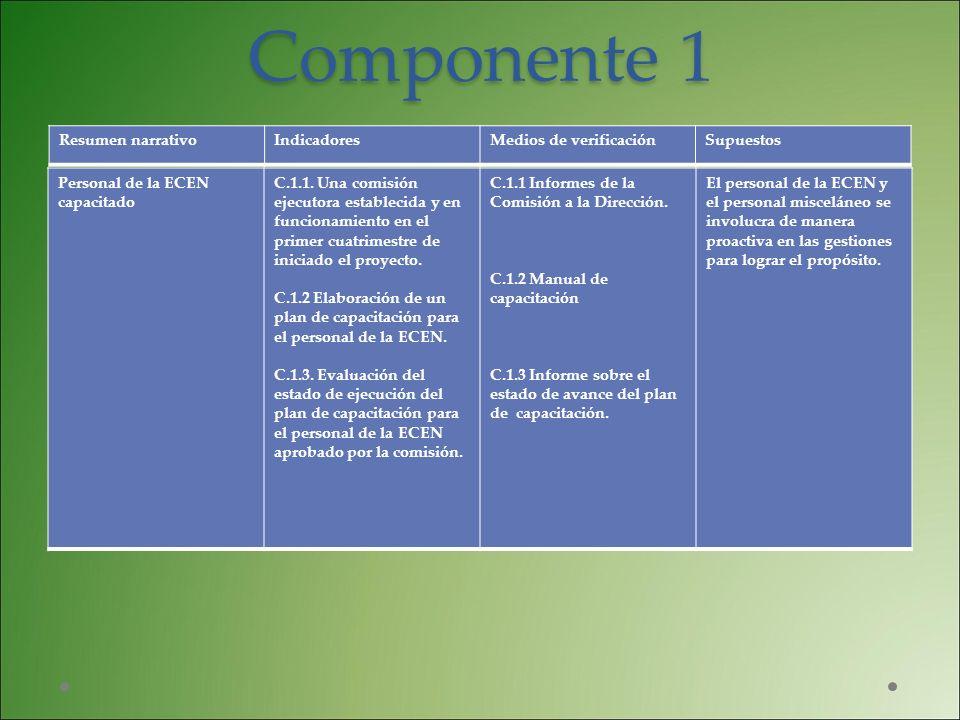 Componente 1 Personal de la ECEN capacitado C.1.1. Una comisión ejecutora establecida y en funcionamiento en el primer cuatrimestre de iniciado el pro