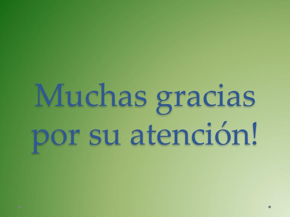 Muchas gracias por su atención!