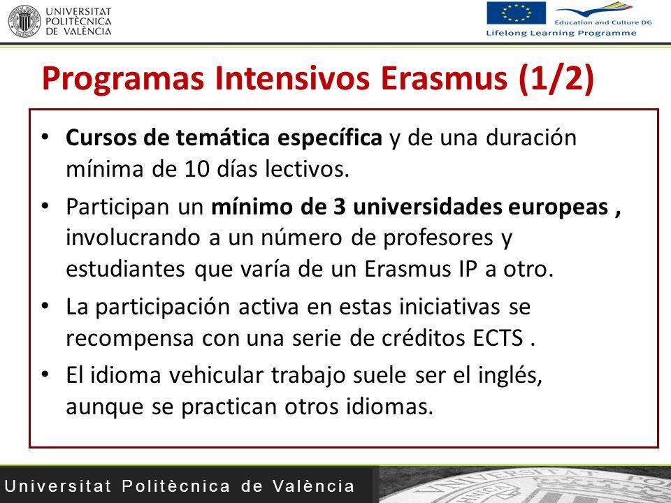 Universitat Politècnica de València Cursos de temática específica y de una duración mínima de 10 días lectivos. Participan un mínimo de 3 universidade