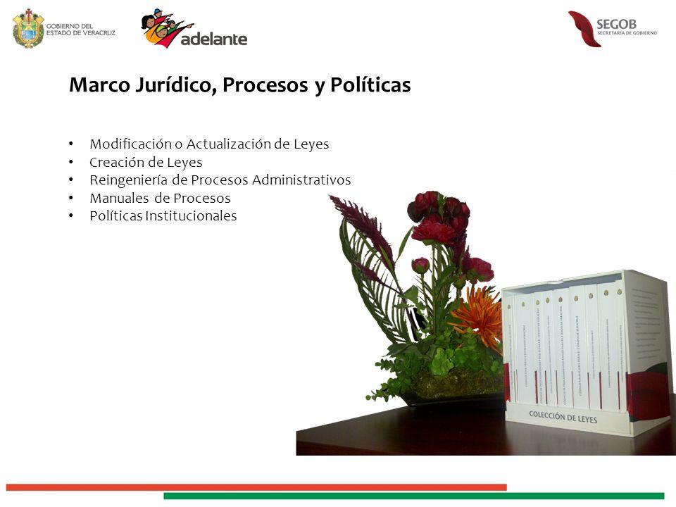 Marco Jurídico, Procesos y Políticas Modificación o Actualización de Leyes Creación de Leyes Reingeniería de Procesos Administrativos Manuales de Procesos Políticas Institucionales