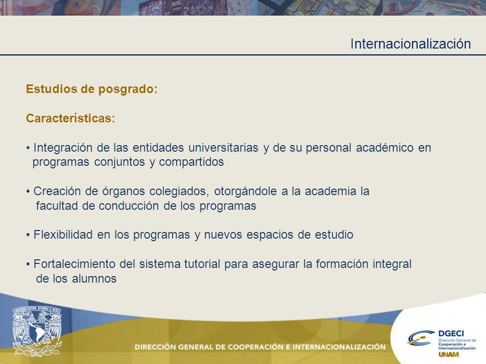 Internacionalización Estudios de posgrado: Características: Integración de las entidades universitarias y de su personal académico en programas conjun