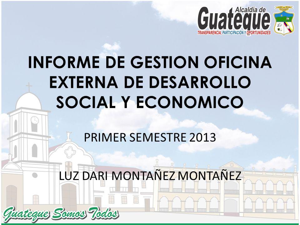 INFORME DE GESTION OFICINA EXTERNA DE DESARROLLO SOCIAL Y ECONOMICO PRIMER SEMESTRE 2013 LUZ DARI MONTAÑEZ MONTAÑEZ