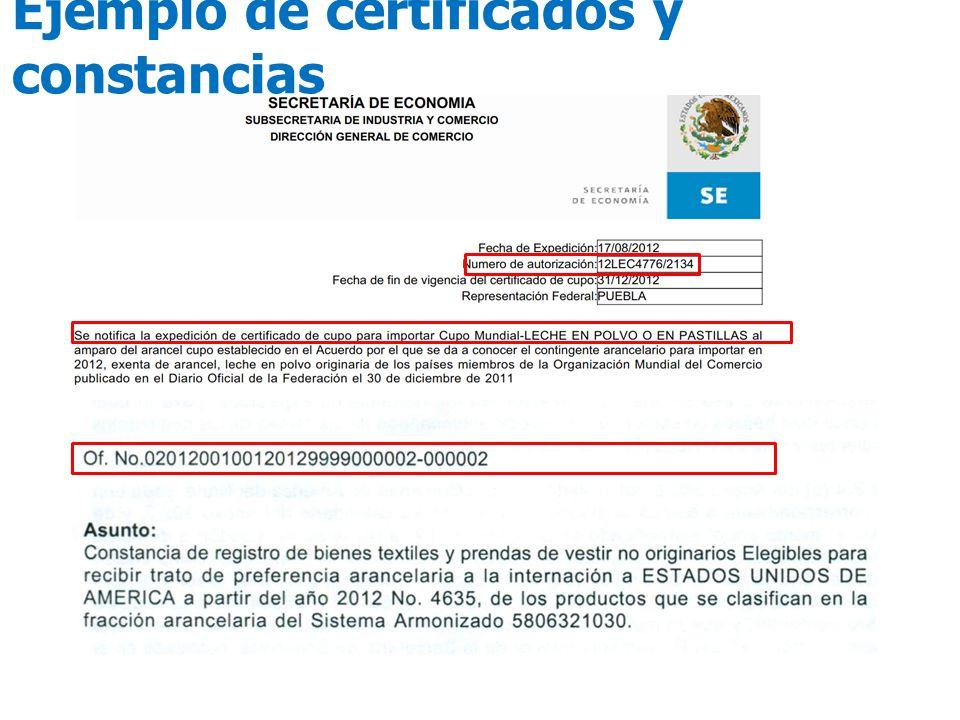 Ejemplo de certificados y constancias