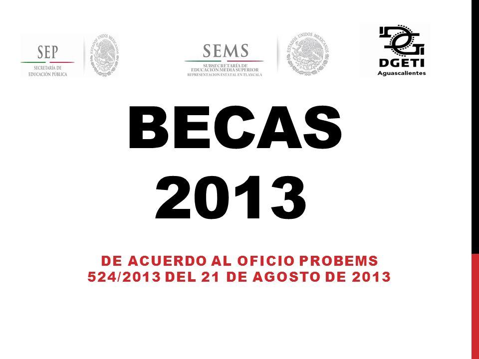BECAS 2013A EMS DE ACUERDO AL OFICIO PROBEMS 524/2013 DEL 21 DE AGOSTO DE 2013
