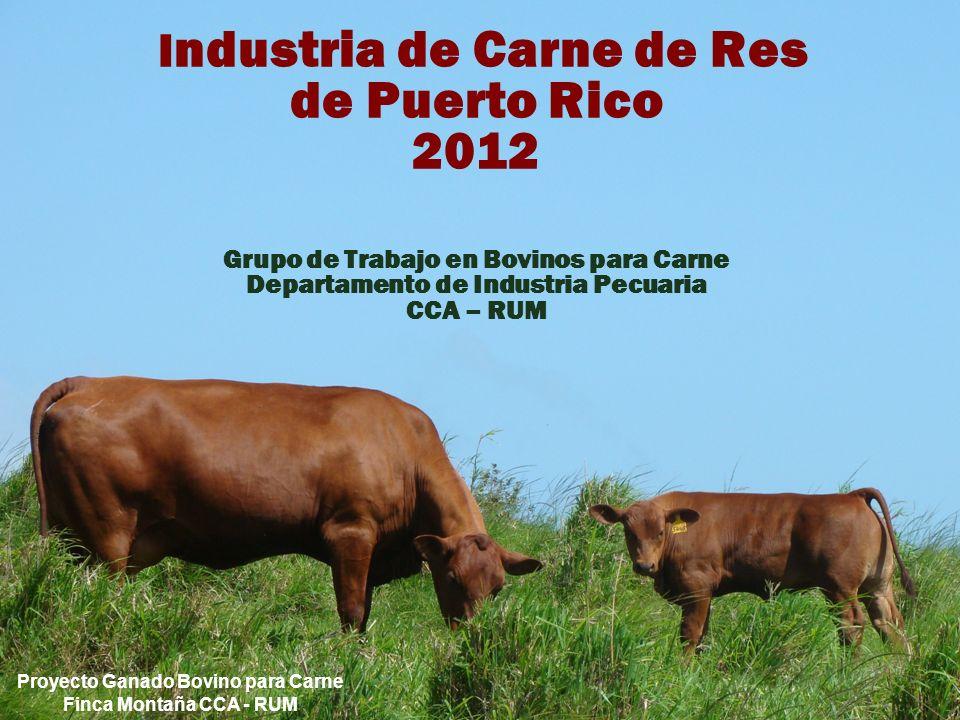 I ndustria de Carne de Res de Puerto Rico 2012 Grupo de Trabajo en Bovinos para Carne Departamento de Industria Pecuaria CCA – RUM Proyecto Ganado Bovino para Carne Finca Montaña CCA - RUM