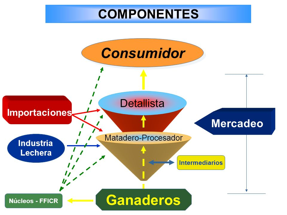 Consumidor Detallista Matadero-Procesador Importaciones Intermediarios Mercadeo COMPONENTES Industria Lechera Ganaderos Núcleos - FFICR