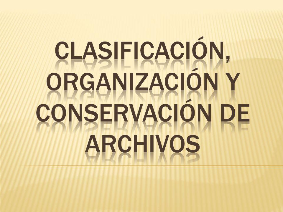 Ley Federal de Archivos Actividades a realizar en materia de clasificación, organización y conservación de archivos en planteles Inventario de expedientes Transferencia primaria de expedientes al Archivo de Concentración Catálogo de Disposición Documental