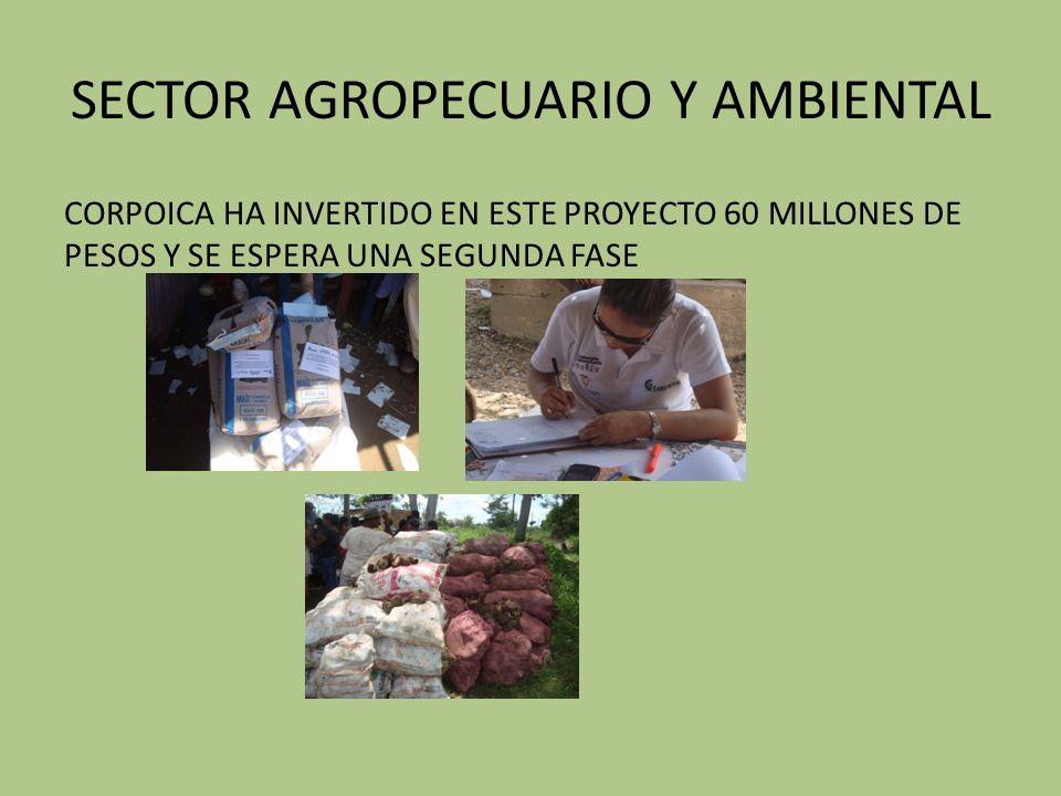 SECTOR AGROPECUARIO Y AMBIENTAL CORPOICA HA INVERTIDO EN ESTE PROYECTO 60 MILLONES DE PESOS Y SE ESPERA UNA SEGUNDA FASE