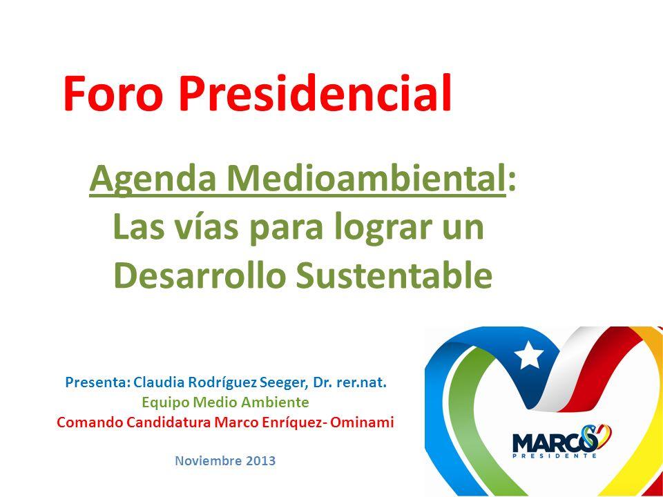 Foro Presidencial Agenda Medioambiental: Las vías para lograr un Desarrollo Sustentable Presenta: Claudia Rodríguez Seeger, Dr. rer.nat. Equipo Medio