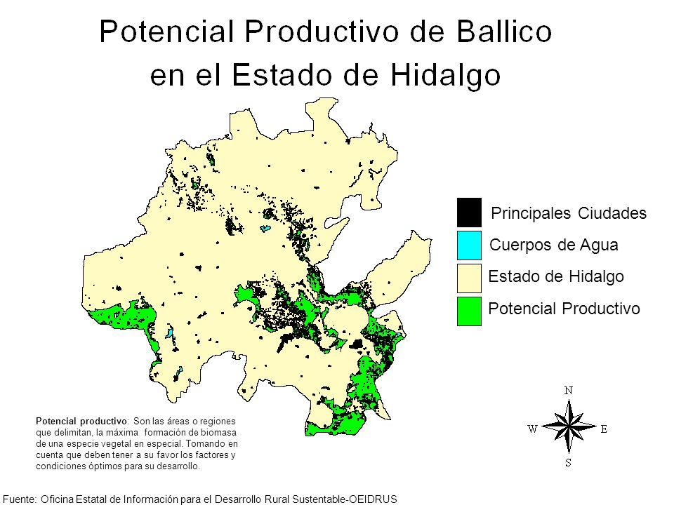 Principales Ciudades Cuerpos de Agua Estado de Hidalgo Potencial Productivo Potencial productivo: Son las áreas o regiones que delimitan, la máxima fo