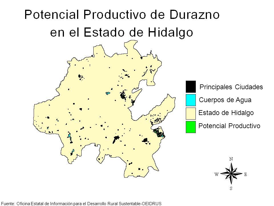 Principales Ciudades Cuerpos de Agua Estado de Hidalgo Potencial Productivo Fuente: Oficina Estatal de Información para el Desarrollo Rural Sustentabl
