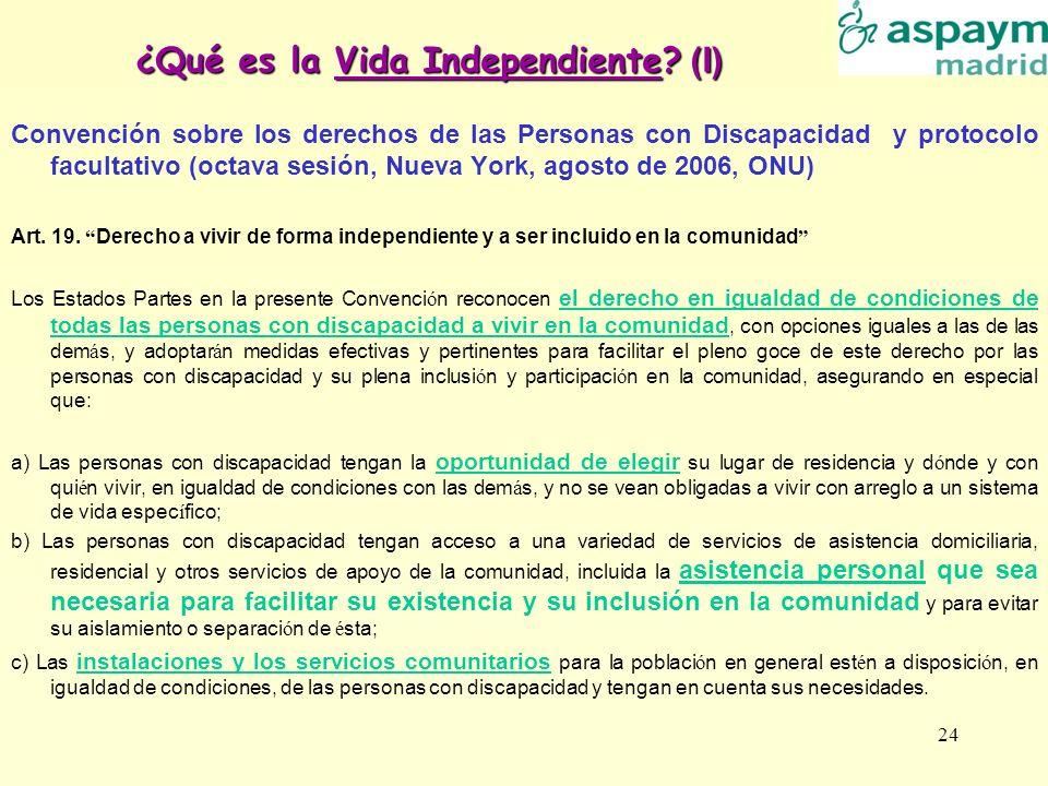 24 ¿Qué es la Vida Independiente? (I) Convención sobre los derechos de las Personas con Discapacidad y protocolo facultativo (octava sesión, Nueva Yor