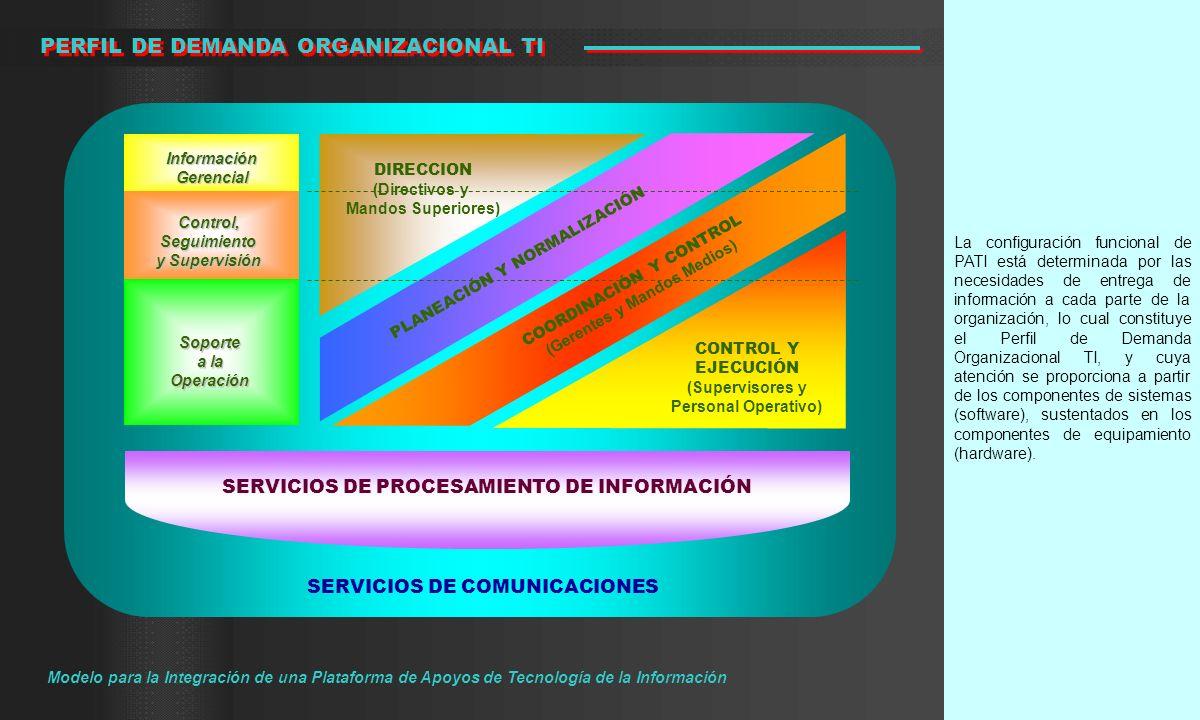 La configuración funcional de PATI está determinada por las necesidades de entrega de información a cada parte de la organización, lo cual constituye