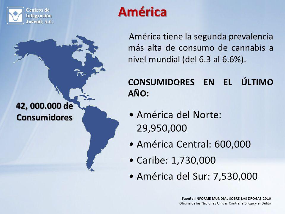 América tiene la segunda prevalencia más alta de consumo de cannabis a nivel mundial (del 6.3 al 6.6%).