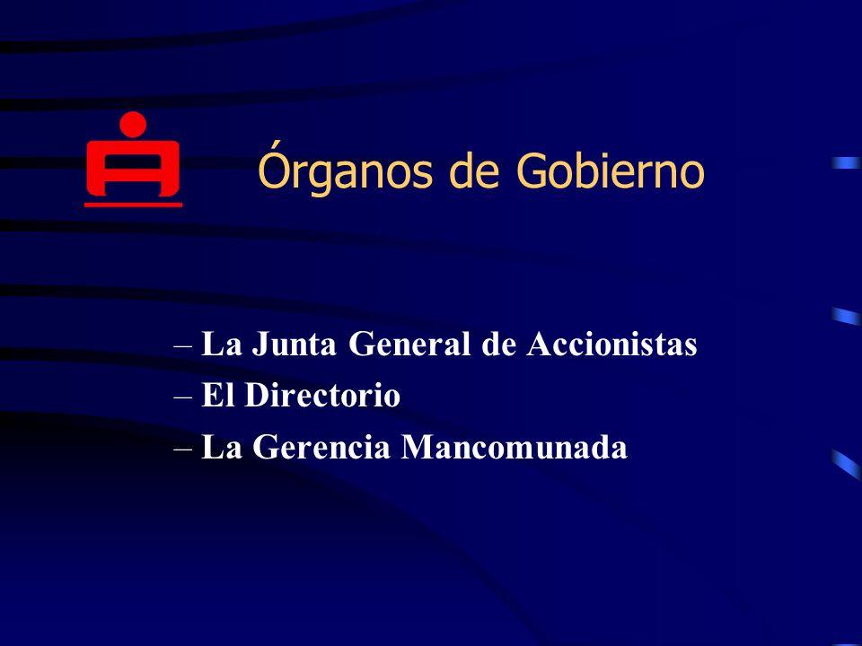 Órganos de Gobierno –La Junta General de Accionistas –El Directorio –La Gerencia Mancomunada