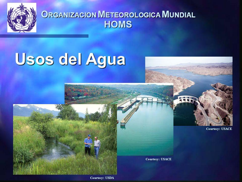 O RGANIZACION M ETEOROLOGICA M UNDIAL HOMS Usos del Agua Usos del Agua Courtesy: USACE Courtesy: USDA