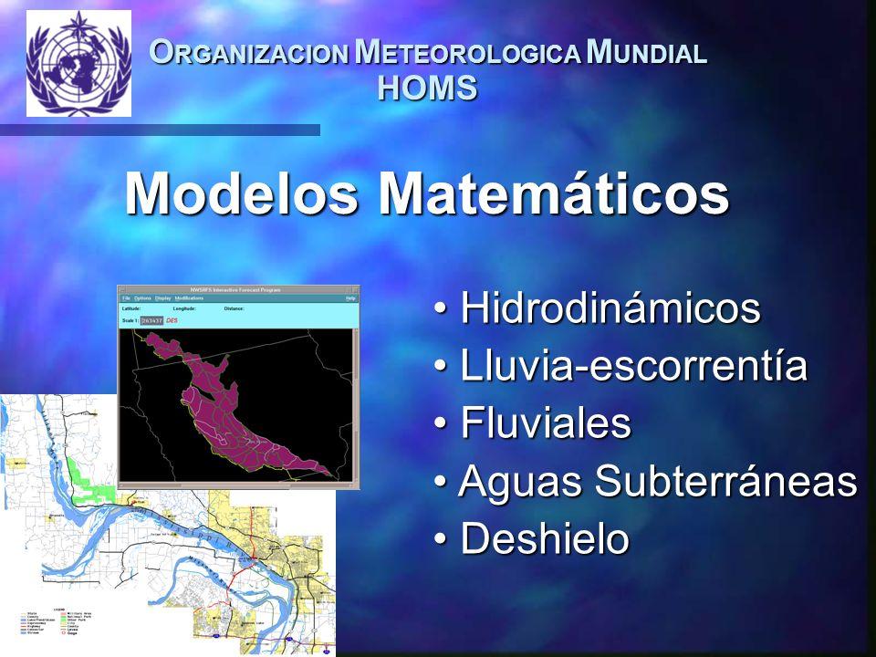 O RGANIZACION M ETEOROLOGICA M UNDIAL HOMS Hidrodinámicos Hidrodinámicos Lluvia-escorrentía Lluvia-escorrentía Fluviales Fluviales Aguas Subterráneas