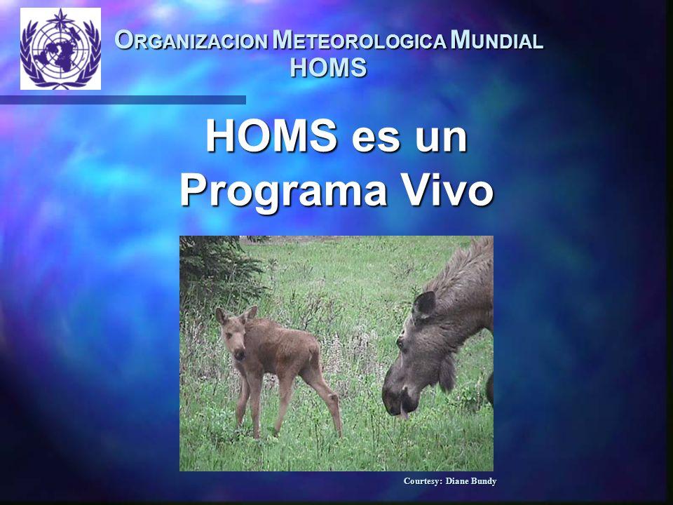 O RGANIZACION M ETEOROLOGICA M UNDIAL HOMS HOMS es un Programa Vivo Courtesy: Diane Bundy