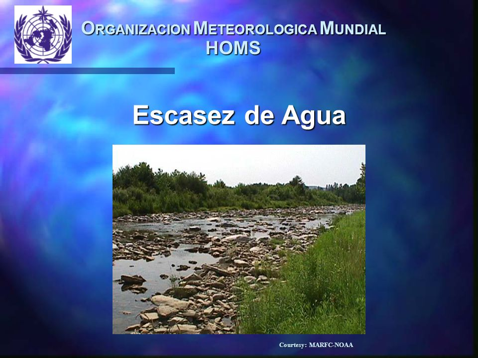 O RGANIZACION M ETEOROLOGICA M UNDIAL HOMS Exceso de Agua Courtesy: Adrea Booher-FEMA